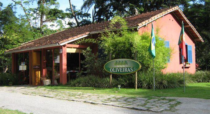 Oliveiras da Serra